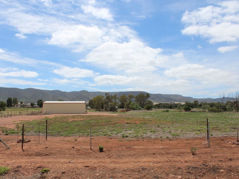 Lot 100, Lot 100 Muster Drive, Napperby, SA 5540