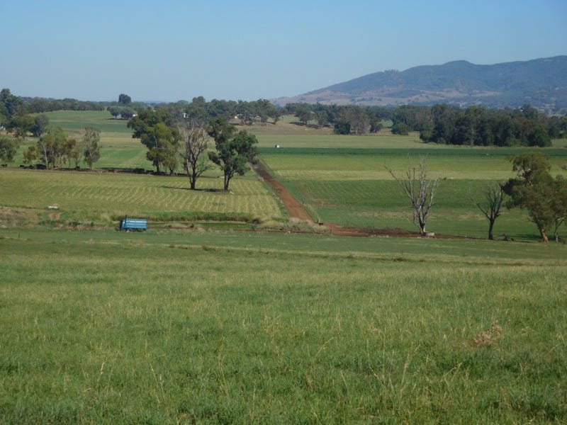 Limestone Park, 50 Kurrajong Place, Tamworth, NSW 2340