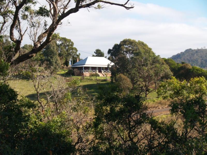 1900 Myrtle Mtn Rd, Candelo, NSW 2550