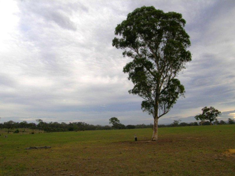 Sellings Road, Maffra, Vic 3860