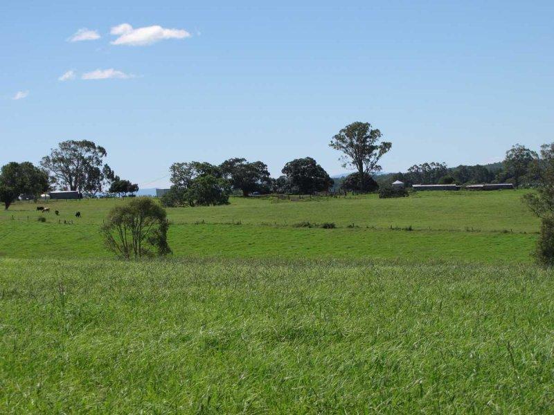 135 Lees Lane, Hogarth Range, NSW 2469