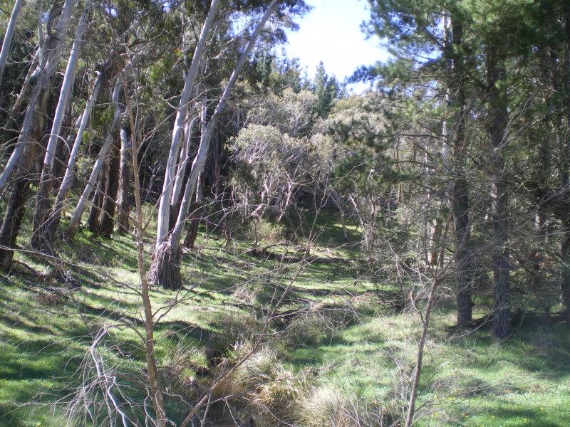 1628 Jerangle Road, Anembo, NSW 2621