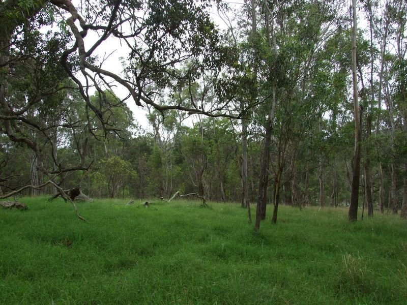 Lot 1 Princes Highway, Frogs Hollow, NSW 2550