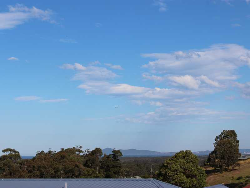 Tallwoods, 59 Hilltop Parkway, Tallwoods Village, NSW 2430