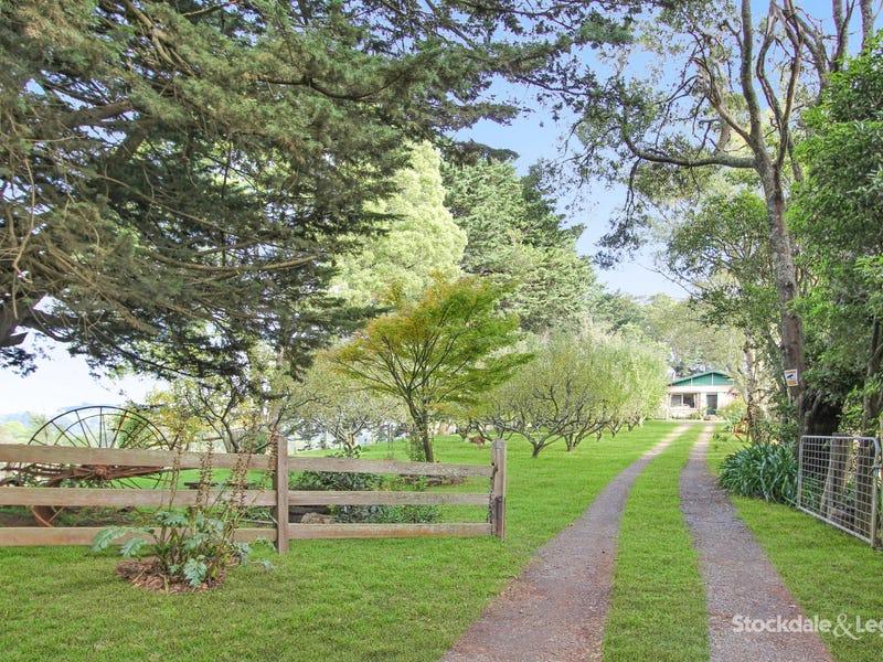 2450 Grand Ridge Road, Mirboo, Vic 3871