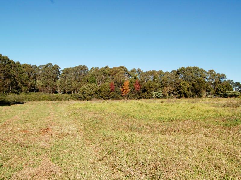 683 TYRINGHAM ROAD, North Dorrigo, NSW 2453