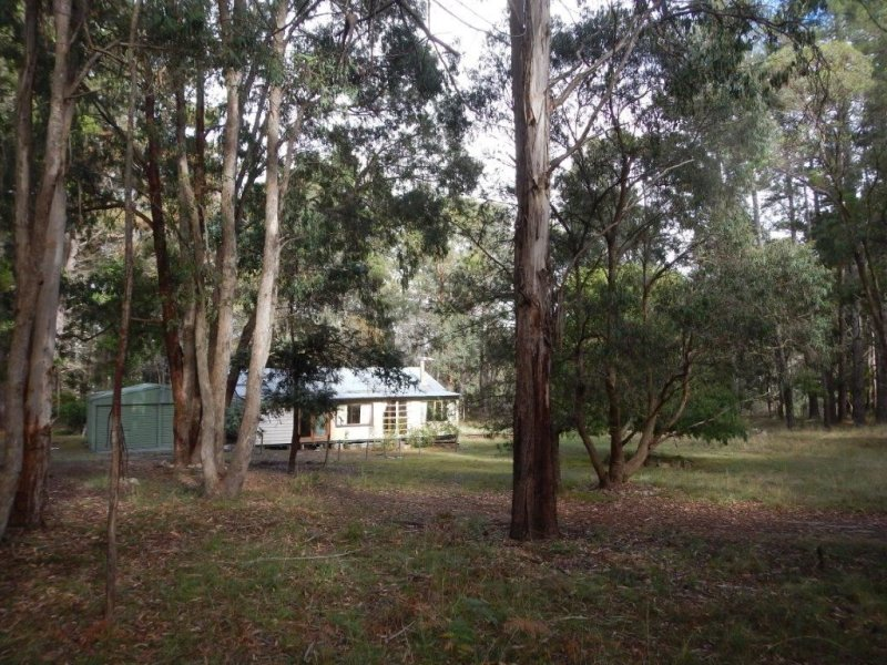 6344 Grafton Road (Waterfall Way), Wollomombi, NSW 2350