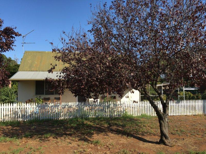 19 Conapaira Street, Whitton, NSW 2705