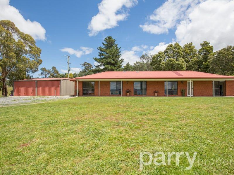 95 Craythorne Road, Rosevears, Tas 7277