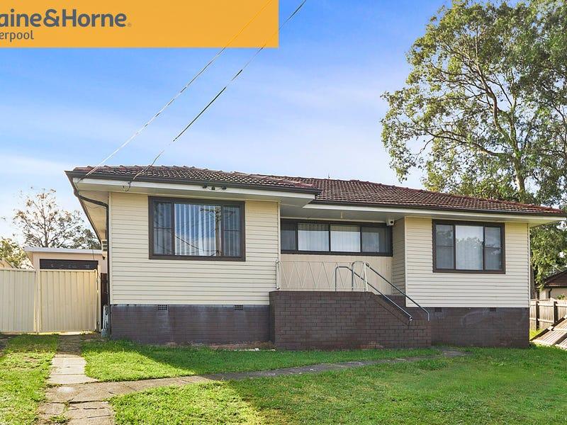 8 Tumut Place, Heckenberg, NSW 2168