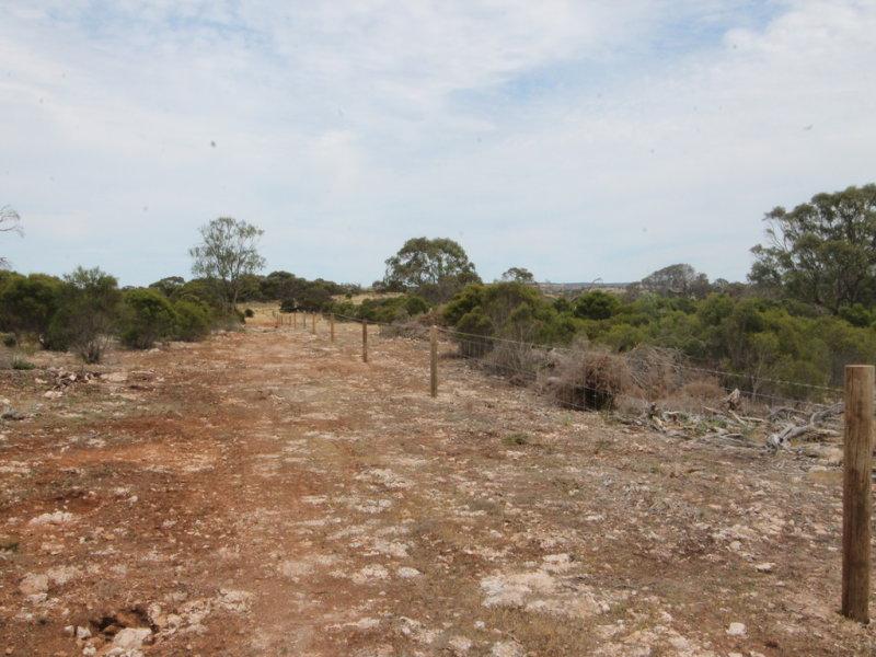 Sec 38 & Lot 2 Hundred of Ulipa, Mount Drummond, SA 5607