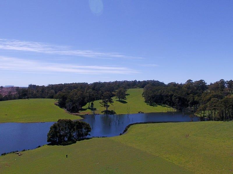 1199 Mawbanna Road, Mawbanna, Tas 7321