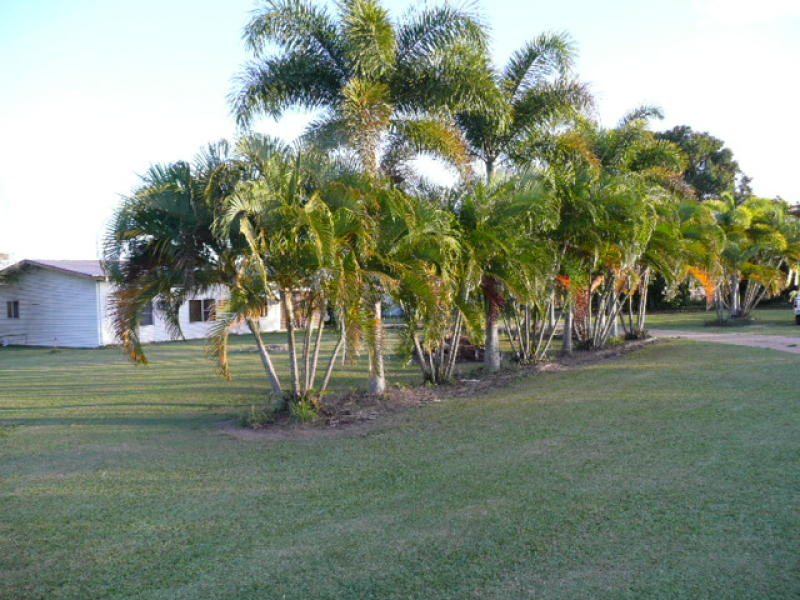 Address available on request, Lannercost, Qld 4850