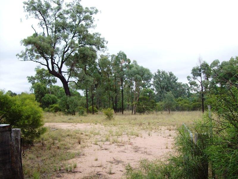 Lot 7, Evans Road, Pilliga, NSW 2388