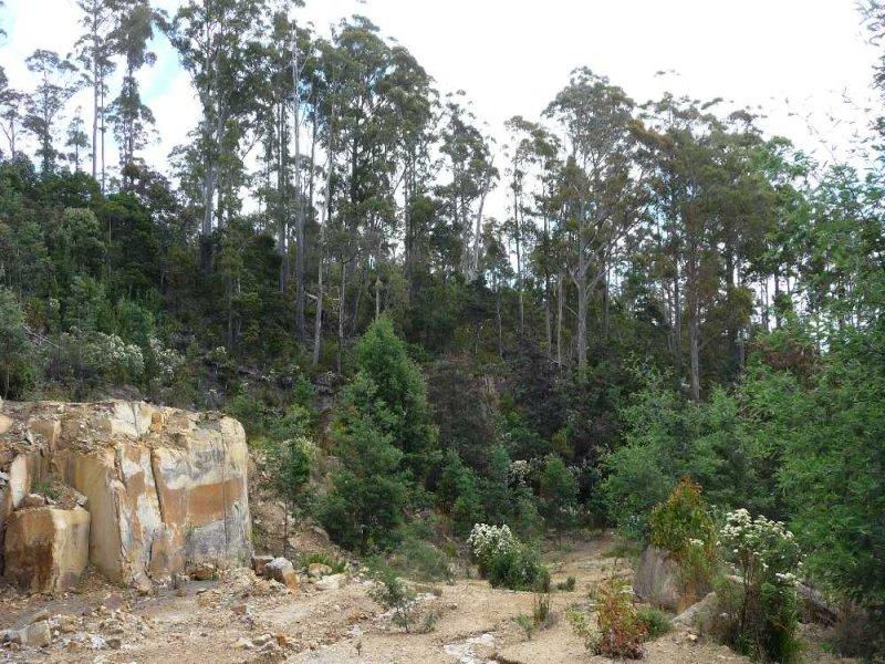 39009 Tasman Highway, Nunamara, Tas 7259