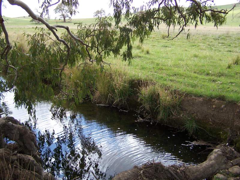 Stony Creek, Bookham, NSW 2582 - Property Details