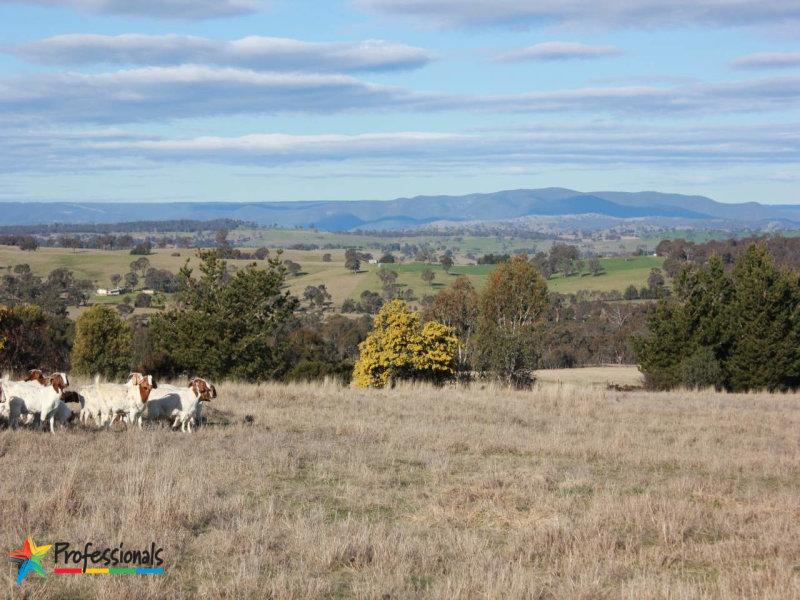 198 Howards Drive, Bathurst, NSW 2795