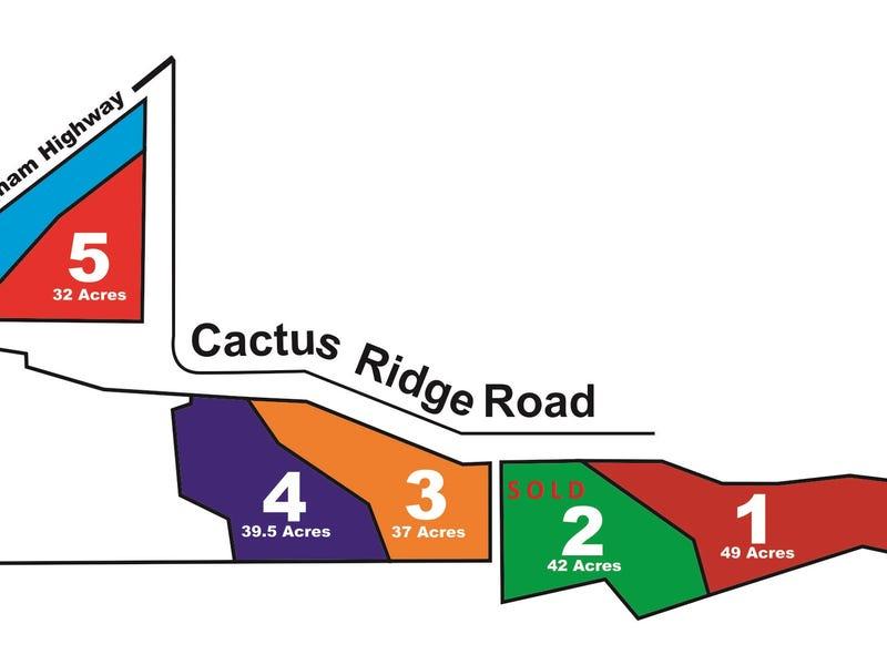 0 Cnr Cunningham Hwy & Cactus Ridge Rd, Rodgers Creek, Qld 4370