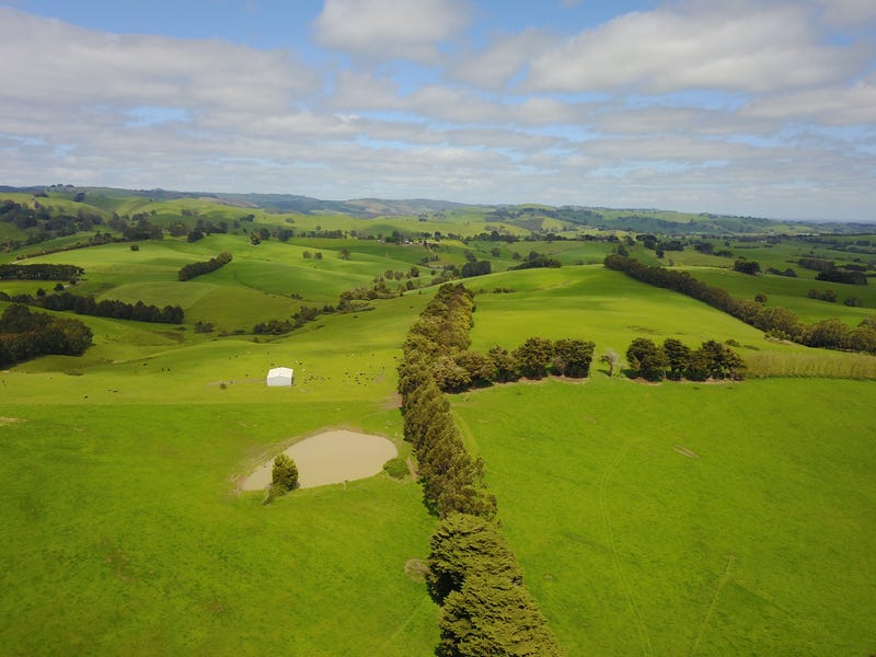 460 CLEAR CREEK VALLEY ROAD, Mirboo, Vic 3871