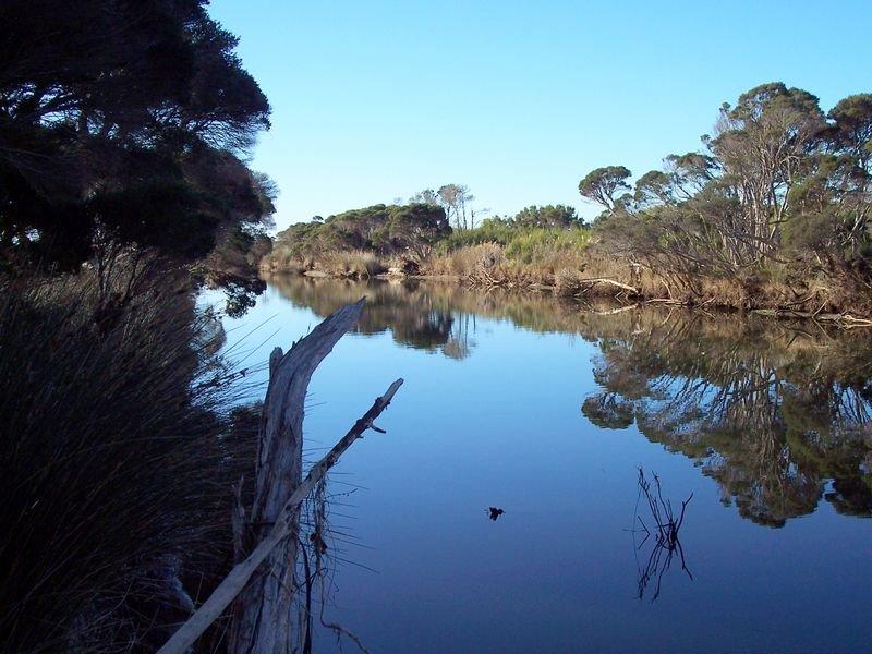 Tasman Highway, Seymour, Tas 7215
