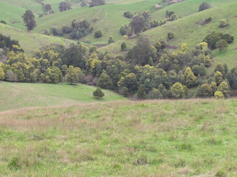 Lot 2, 305 McKenzie Road, Neerim East, Vic 3831