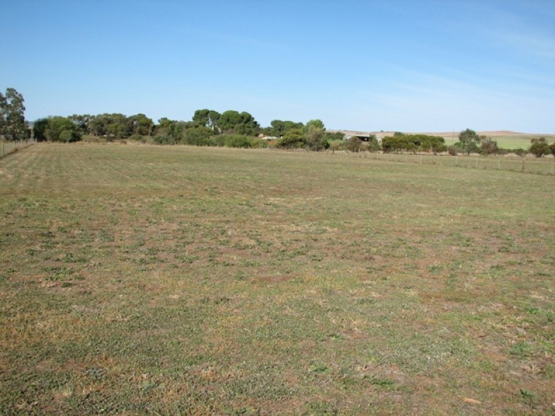 Lot 741 St Kiits Road, Dutton, SA 5356