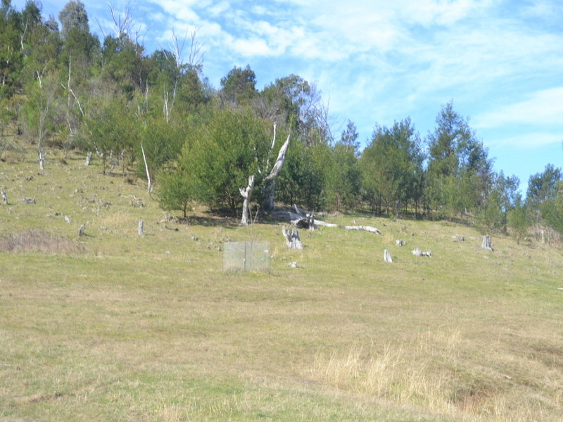 770 Cassilis Road, Swifts Creek, Vic 3896