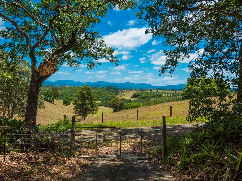 1113 Dunoon Road, Modanville, NSW 2480