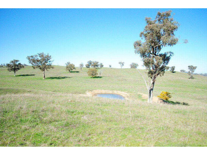 346 Avoca Road, Stuart Town, NSW 2820