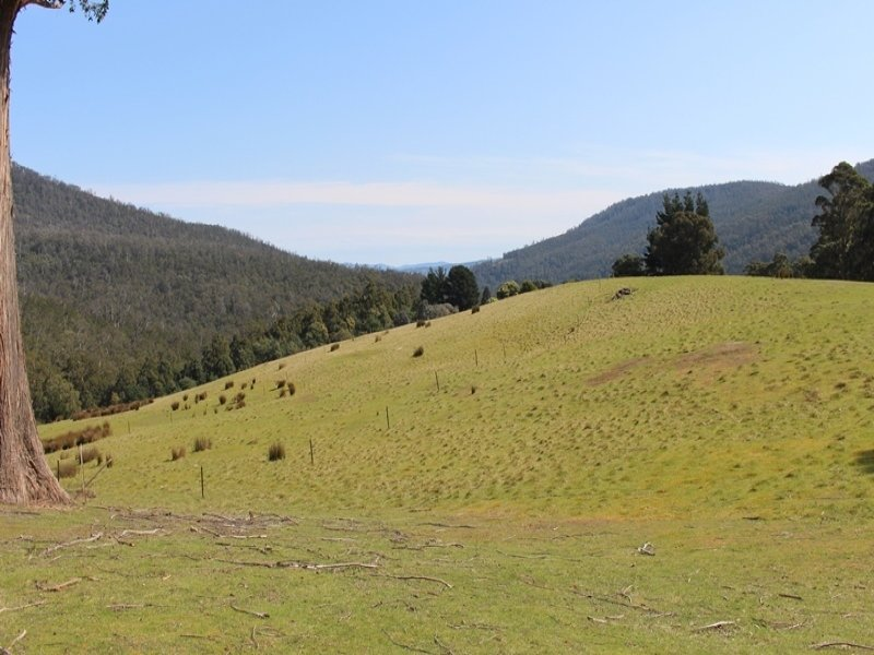 Lot 4, 100 Crosswells Road, Pelverata, Tas 7150