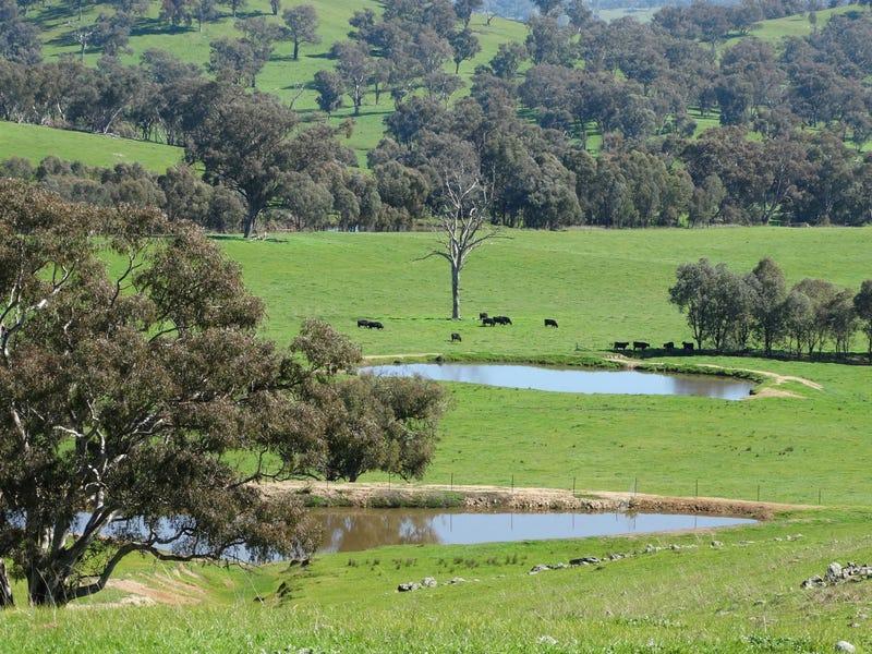 813 BUNGOWANNAH ROAD, Bungowannah, NSW 2640