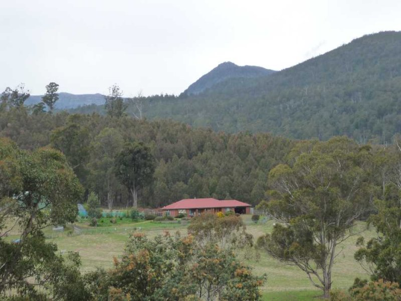 1920 Deddington Road, Blessington, Tas 7212