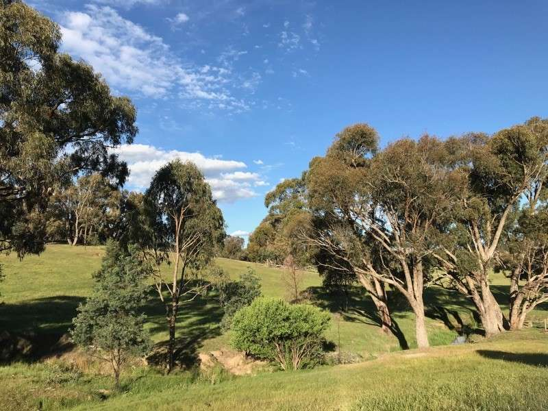 2728 Junction Point Road, Binda, NSW 2583