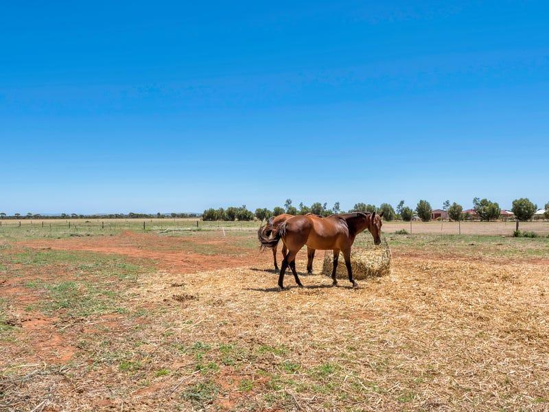 22 Racecourse Road, Balaklava, SA 5461