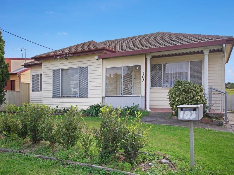 103 Anderson Drive, Tarro, NSW 2322