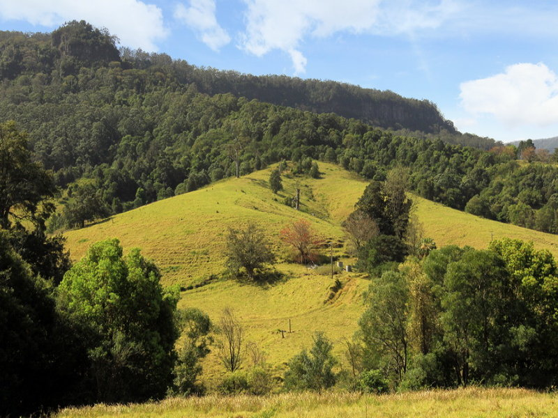 Lot 104 Browns Mountain Road, Cambewarra, NSW 2540