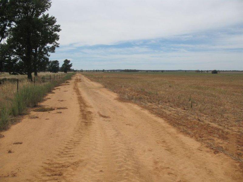 . PT Murribee, West Wyalong, NSW 2671