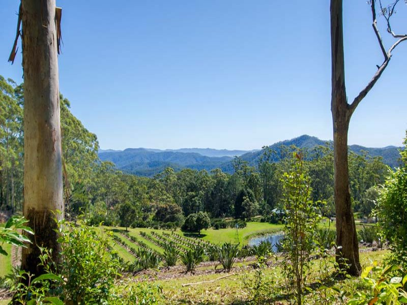 Lot 1 Middle Ridge Road, Upper Main Arm, NSW 2482