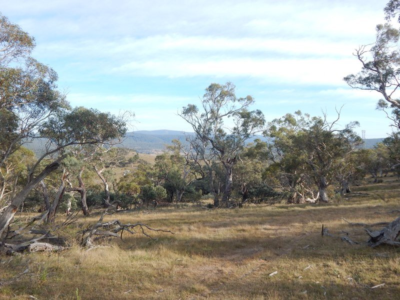 Lot 199 Eucumbene River Via, Nimmo, NSW 2628