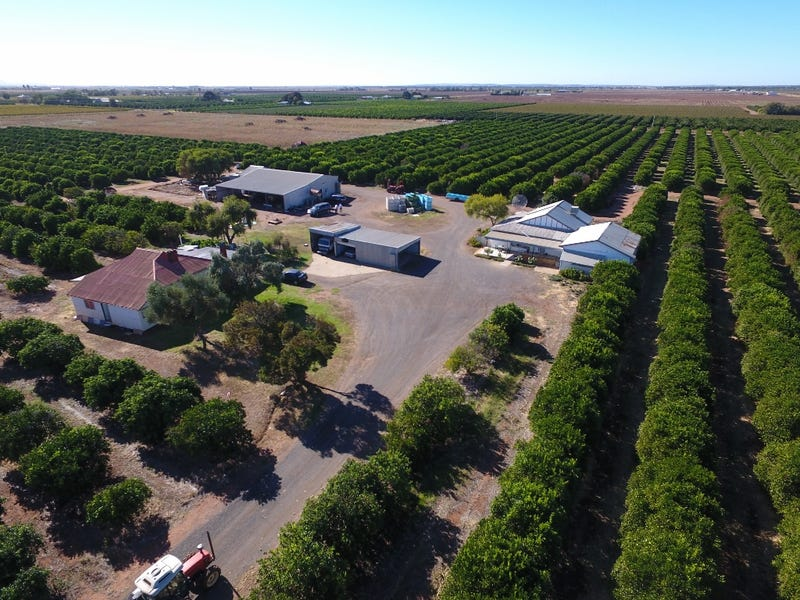 Farm 79 Murray Road, Yoogali, NSW 2680