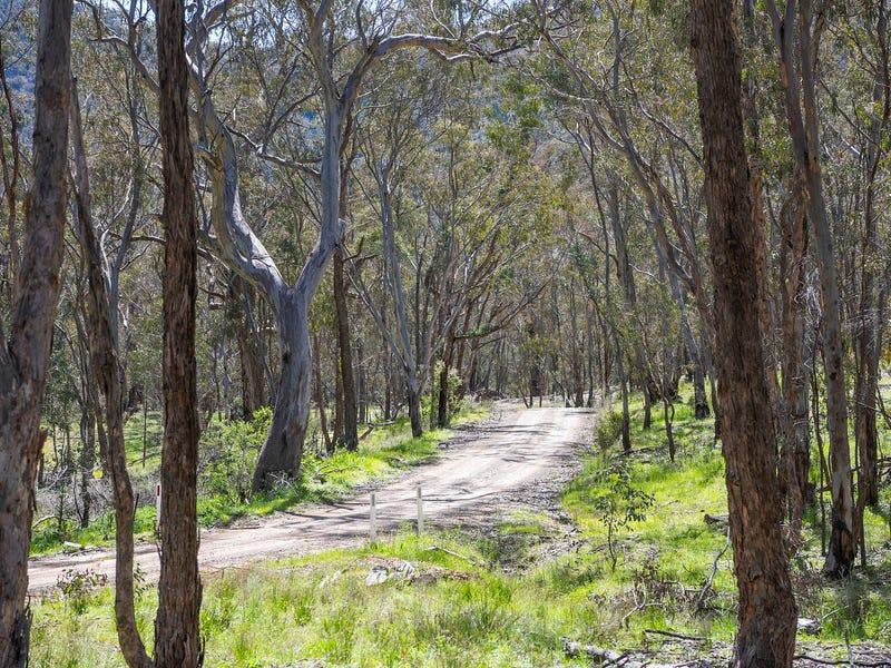 559 Maitland Bar Road, Mudgee, NSW 2850