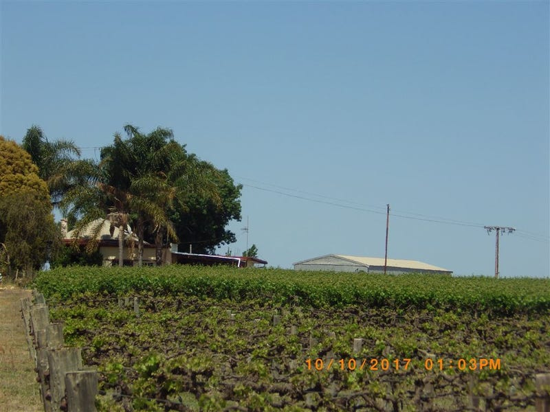 296 & A113 McKenzie  & Brand Roads, Barmera