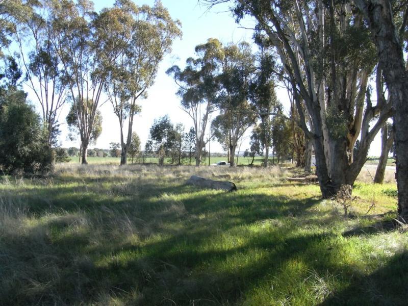 RMB 111 Alma Park Road (Cnr Glue Pot Road), Walla Walla, NSW 2659