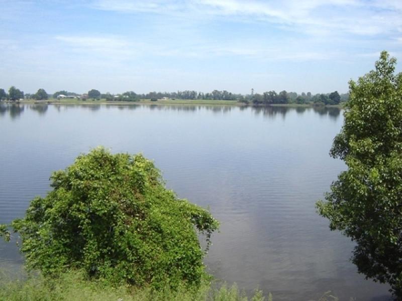 1431 Pacific Highway, Ulmarra, NSW 2462