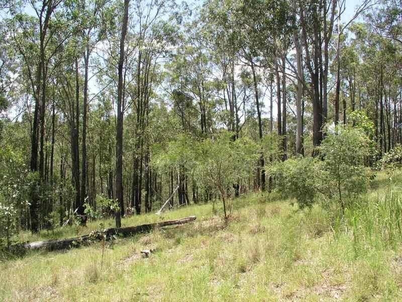 131 Doboy Road, Buccarumbi, NSW 2460