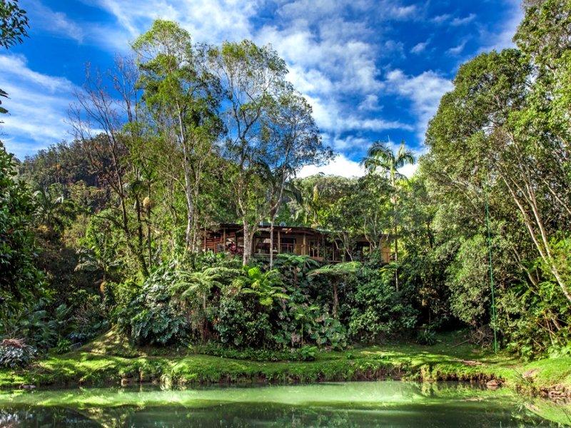 859 Wilsons Creek Road, Wilsons Creek, NSW 2482