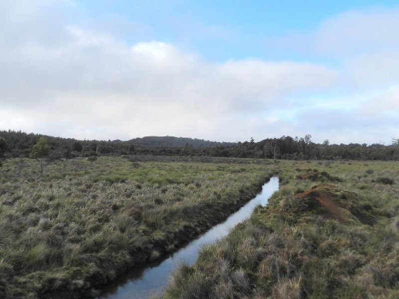 Lot 1 Waratah Road, Waratah, Tas 7321