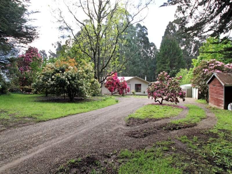 1732 Healesville-Kinglake Road, Toolangi, Vic 3777