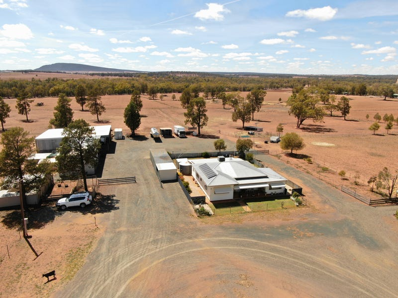 110 Teamster, Weethalle, NSW 2669