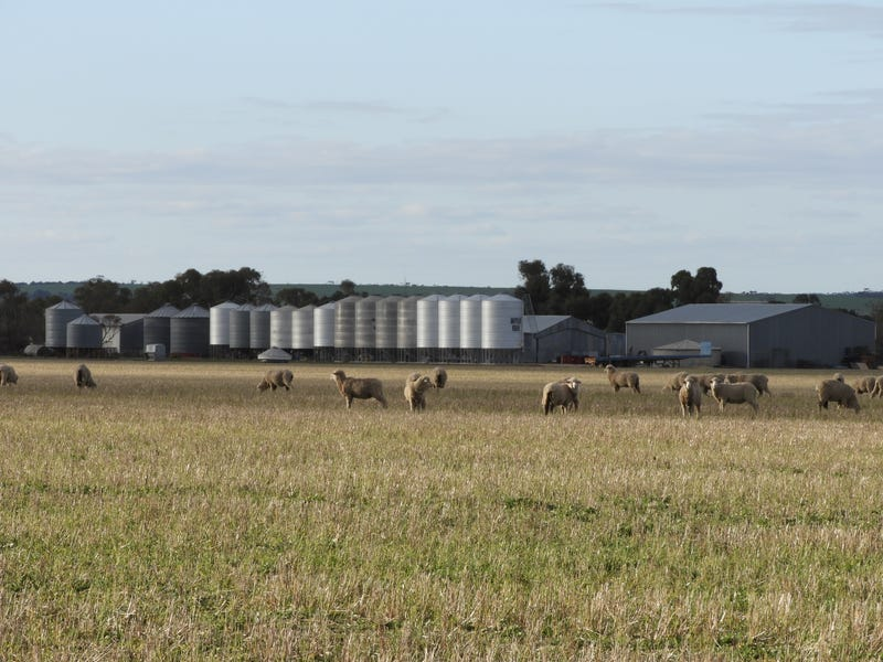 Di Russo Farms, Hyden, WA 6359